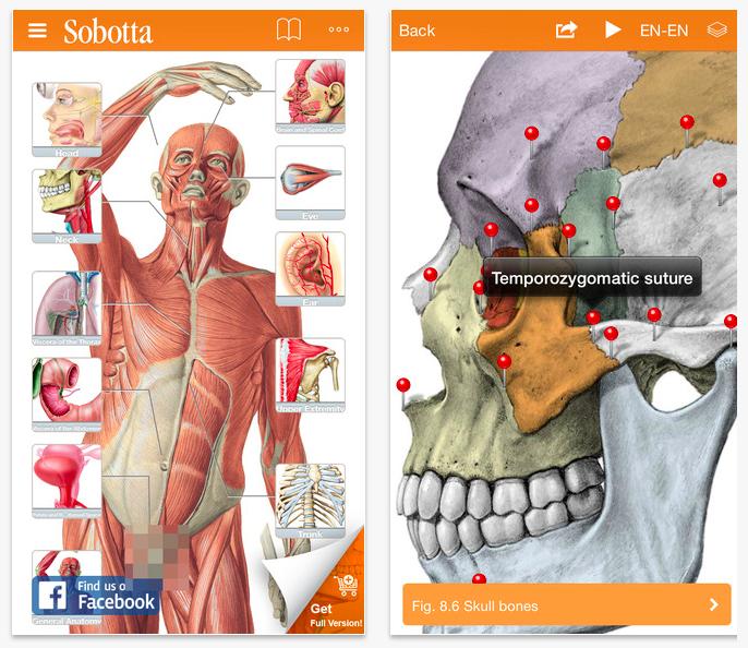 Aplicaciones para odontólogos: tu vida más fácil en menos tiempo ...